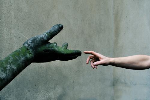 untouchable Mensch grün Hand ruhig Kunst Park Arme Haut Finger Gebet Kultur berühren Sicherheit Vertrauen Gesellschaft (Soziologie) Moos