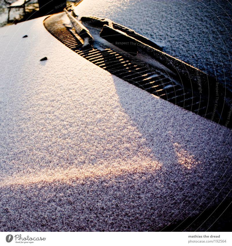 SONNE vs. SCHNEE Umwelt Natur Sonnenaufgang Sonnenuntergang Winter Eis Frost Schnee Verkehr Autofahren Fahrzeug PKW Coolness kalt Motorhaube Windschutzscheibe