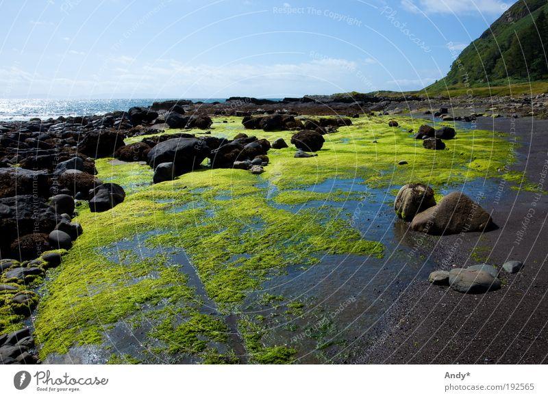 Ebbe Himmel Natur Wasser grün blau Pflanze Strand Ferien & Urlaub & Reisen Meer schwarz Ferne Landschaft Stein Küste Felsen Insel