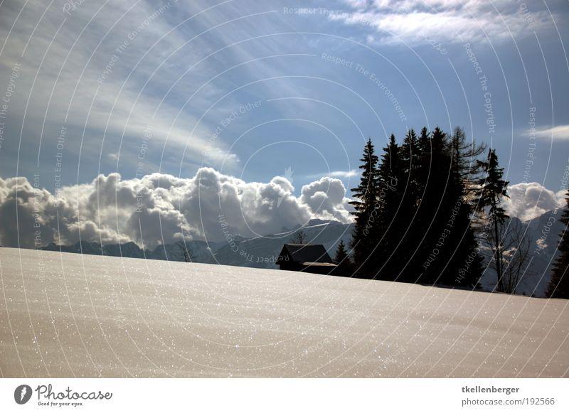 Das Haus am Schnee Himmel Natur Baum Pflanze Winter Wolken Haus Landschaft kalt Schnee Berge u. Gebirge Eis Wind Freizeit & Hobby Frost Schönes Wetter