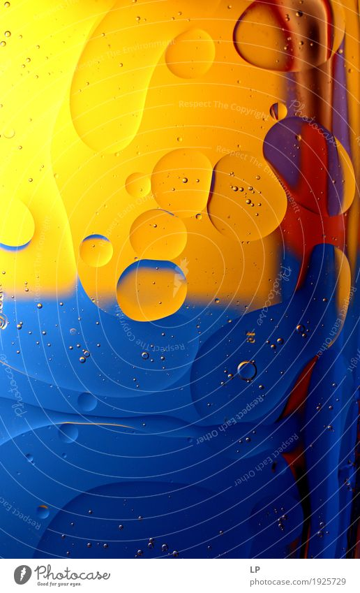 vertikales Duett blau / gelb Lifestyle Stil Design exotisch Freude Wellness Leben harmonisch Wohlgefühl Zufriedenheit Sinnesorgane Erholung ruhig Meditation
