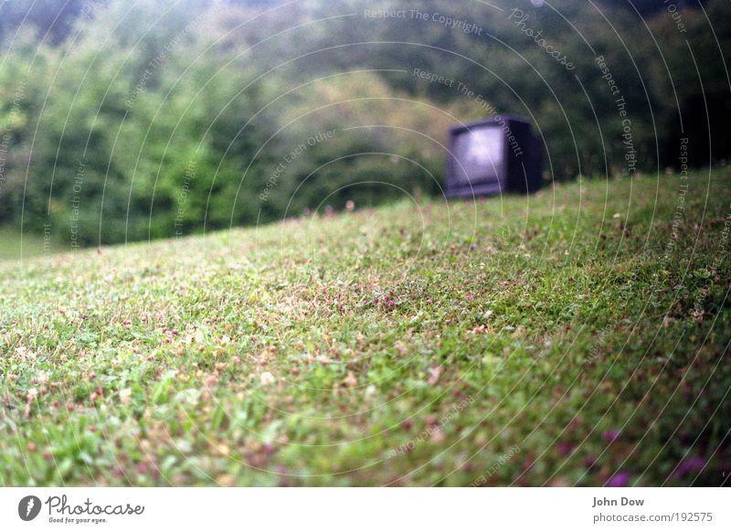 Die WM kann kommen grün Wiese Gras Garten Park Fernseher Sträucher Schönes Wetter Umweltverschmutzung Rest Fernsehen schauen Medien Unschärfe Sperrmüll