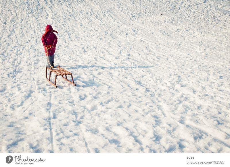 Rotkäppchen Freude Freizeit & Hobby Spielen Winterurlaub Mensch Kind 1 3-8 Jahre Kindheit Schönes Wetter Schnee kalt rot weiß Schlitten ziehen Rodeln gehen