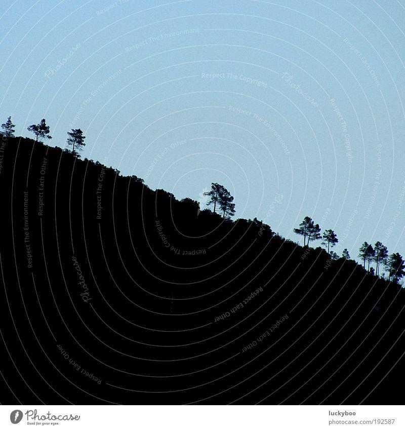 Downhill Natur Himmel Baum blau Pflanze ruhig schwarz Einsamkeit oben Berge u. Gebirge Landschaft Feld Umwelt Erde Wachstum trist