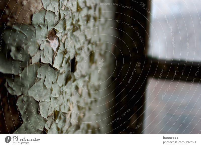 es bröckelt leicht Industrieanlage Ruine Mauer Wand Fenster Stein Beton Glas alt trist Verfall Zeit Putz abblättern Gedeckte Farben Innenaufnahme Nahaufnahme