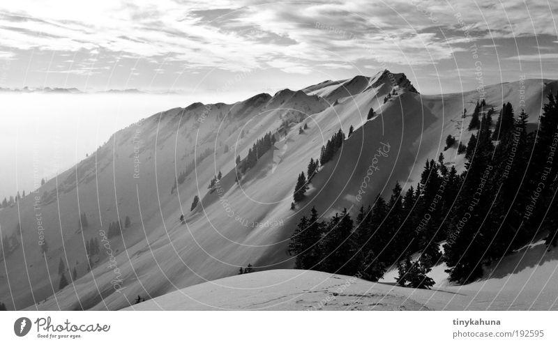 ... Himmel Natur Baum Winter Wolken Landschaft Schnee Berge u. Gebirge Freiheit träumen Nebel Ausflug Alpen Schönes Wetter Schneebedeckte Gipfel Winterurlaub