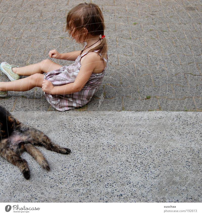 katzen und kinder .. Katze Kind Mädchen Freude Tier Leben Haare & Frisuren Kindheit natürlich Beton Fell einfach Idylle Haustier Mensch Tierliebe