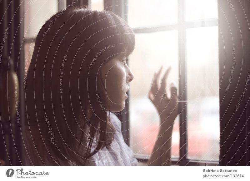 so leicht und so schwer. Mensch Jugendliche schön Gesicht ruhig Einsamkeit dunkel feminin Fenster Haare & Frisuren Kopf Denken hell braun warten Hoffnung