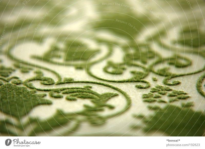 green passion Design Dekoration & Verzierung Papier Verpackung Ornament Linie dünn trendy nah retro schön wild grün Frühlingsgefühle geheimnisvoll Tribal samtig