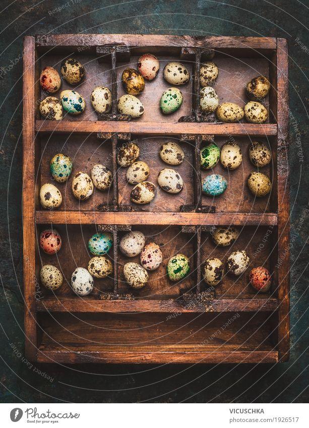 Holzkiste mit bunten Eiern für Ostern Stil Design Freude Häusliches Leben Dekoration & Verzierung Feste & Feiern Natur Religion & Glaube Tradition altehrwürdig