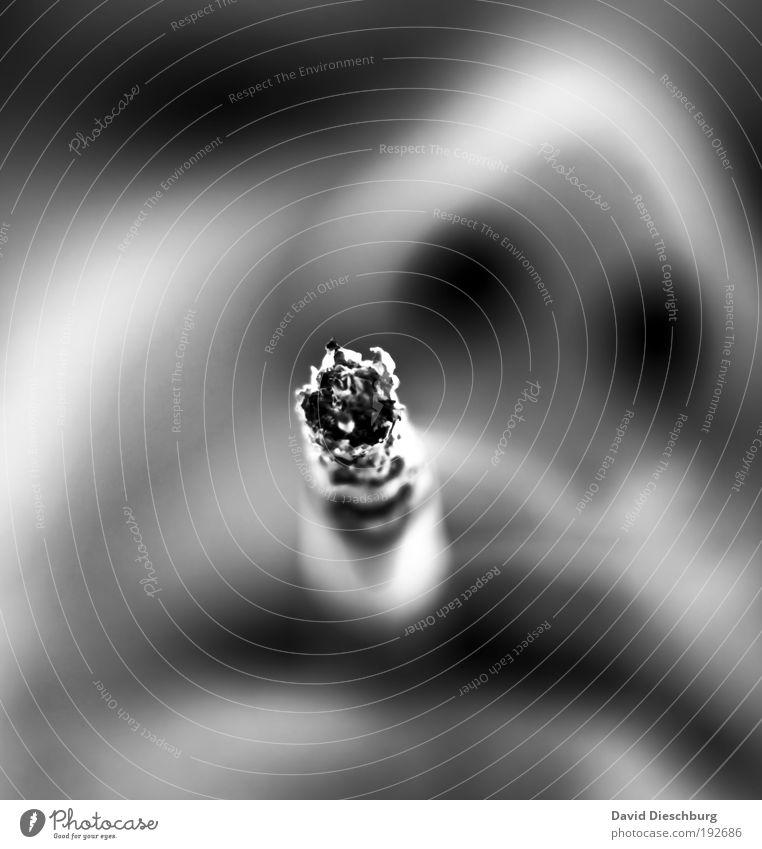 Zug um Zug... Gesicht Nase Mund Lippen Rauchen Sucht Zigarette Zigarettenasche Abhängigkeit Nikotin ungesund Filterzigarette Schwarzweißfoto Nahaufnahme