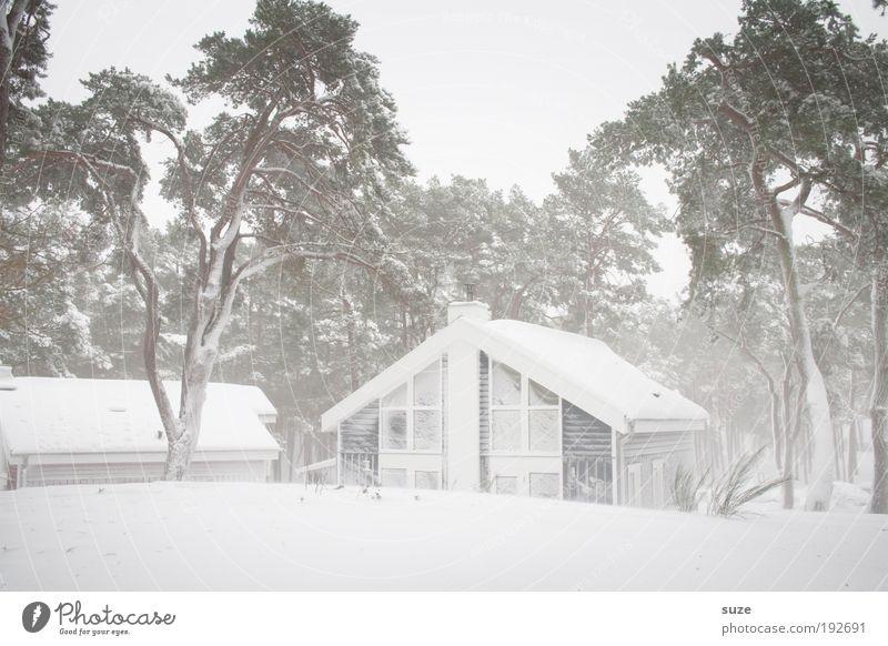 Schnee vor der Hütte Himmel Natur Ferien & Urlaub & Reisen weiß Baum Einsamkeit Winter Haus Umwelt kalt hell Eis Wind Häusliches Leben Frost