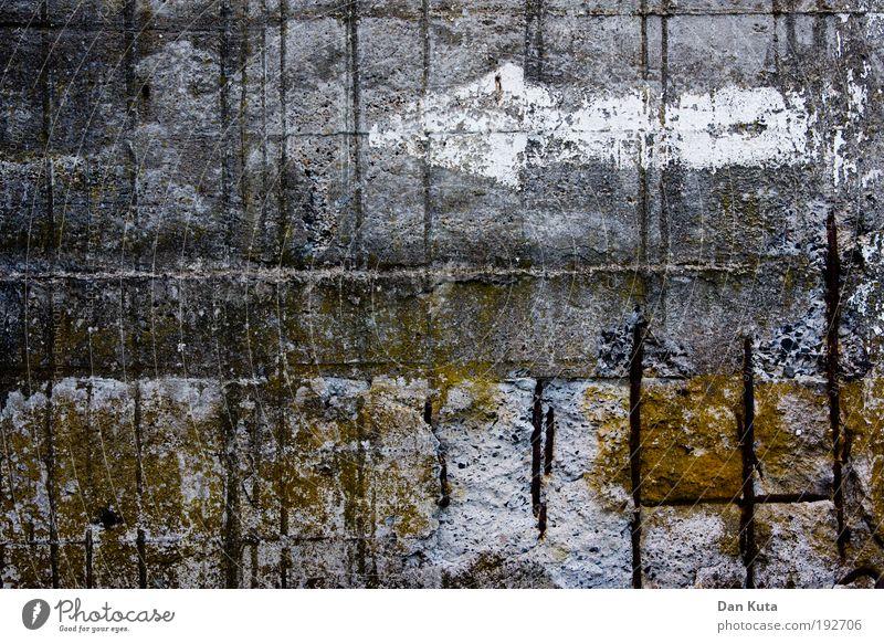 Betonierte Sumpflandschaft Natur ruhig Einsamkeit Herbst Landschaft Berge u. Gebirge See dreckig Nebel Urelemente schäbig Moos Zerstörung Teich Surrealismus