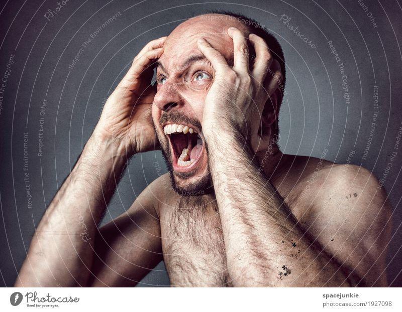 2017 Mensch maskulin Mann Erwachsene 30-45 Jahre schwarzhaarig kurzhaarig Glatze Bart Dreitagebart Vollbart Behaarung Brustbehaarung Aggression außergewöhnlich
