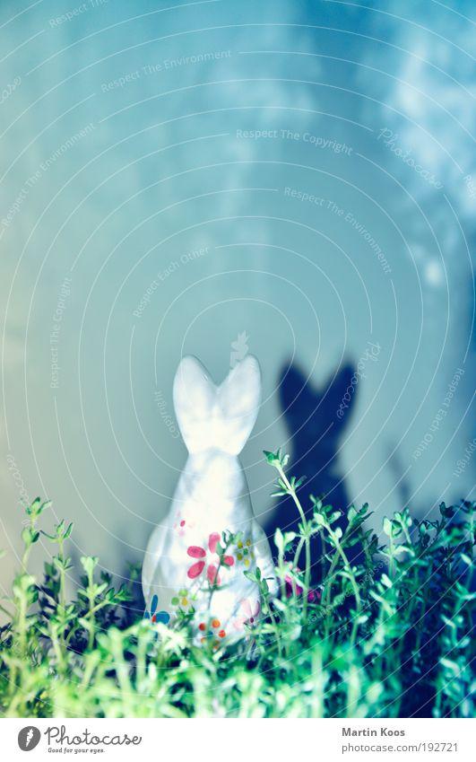 Ostertrip III Feste & Feiern Ostern Bewegung entdecken Osterhase Osterei Schatten Schattenspiel Blume Dekoration & Verzierung leuchten Beleuchtung strahlend