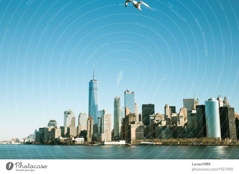 New York City - Skyline & Bird Ferien & Urlaub & Reisen Tourismus Ausflug Sightseeing Städtereise Wasser Fluss Manhattan Stadt Stadtzentrum Stadtrand Hochhaus