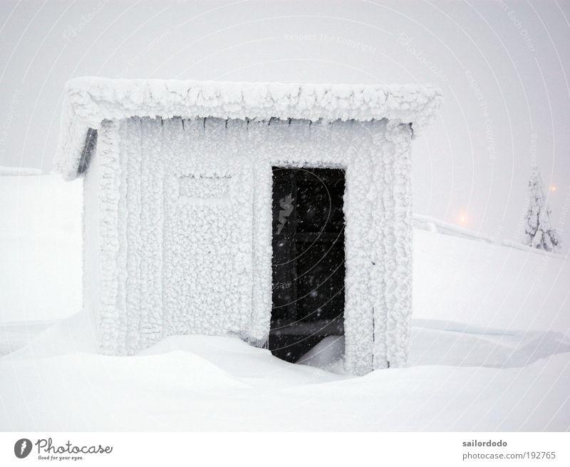Eisige Bushaltestelle Umwelt Winter Klima Klimawandel Wetter Nebel Frost Schweden Hütte Öffentlicher Personennahverkehr Busfahren warten kalt grau weiß Natur
