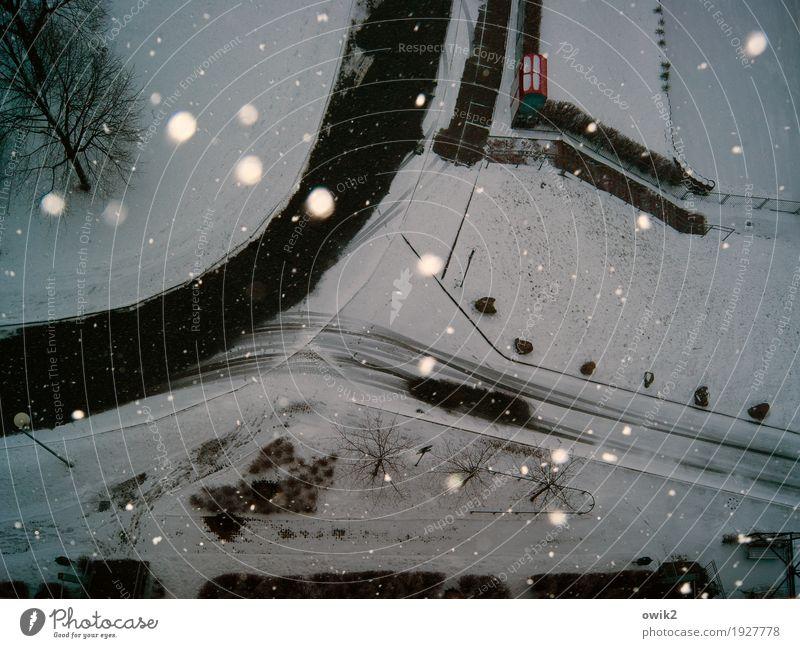 Downtown Umwelt Natur Winter Schönes Wetter Schnee Schneefall Baum Kleinstadt Straße Bürgersteig Treppe Container Asphalt Blumenbeet Straßenbeleuchtung