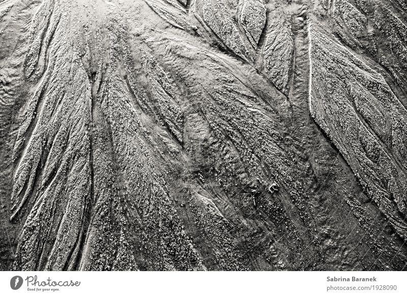 Sand II Umwelt Natur Erde Wasser Wassertropfen Nordsee Gefühle Stimmung Schwarzweißfoto Außenaufnahme Nahaufnahme Detailaufnahme abstrakt Muster