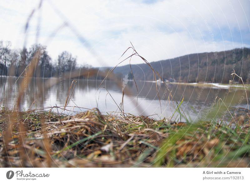 Schnee von Gestern Himmel Natur Wasser Pflanze Wolken Wiese Freiheit Gras Landschaft Frühling Umwelt Regen See Wetter Feld Horizont