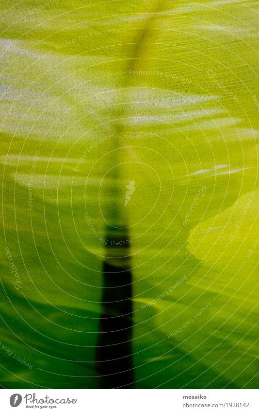 Texturen von tropischen Pflanzen Lifestyle elegant Stil Design exotisch Wellness Leben Wohlgefühl Spa Kunstwerk Gemälde Natur Blatt Grünpflanze ästhetisch