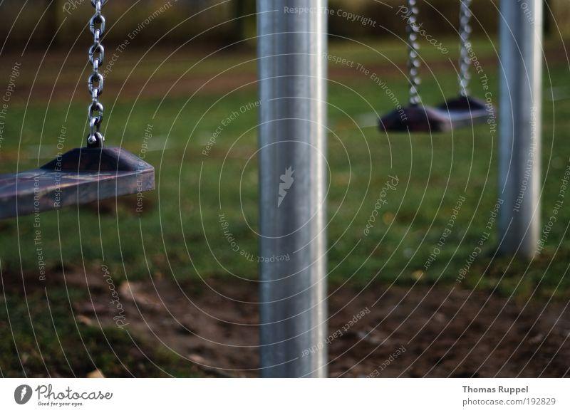 Schaukel Freude Freizeit & Hobby Spielen Kinderspiel Spielplatz Pflanze Wiese Menschenleer Schaukelkette schaukeln Farbfoto Außenaufnahme Nahaufnahme