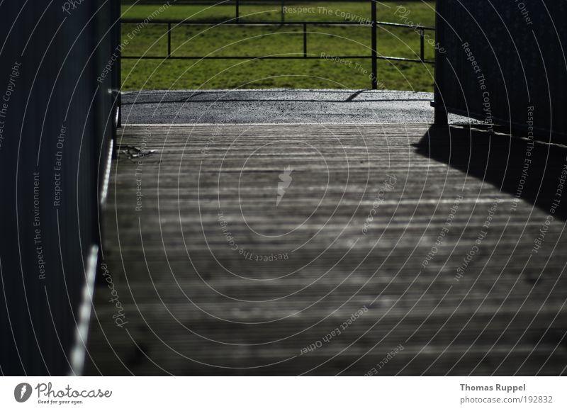 Holzbrücke Umwelt Natur Wärme Pflanze Gras Wiese Feld Menschenleer Brücke Mauer Wand Geländer Verkehrswege Wege & Pfade Zaun grau grün Vertrauen Sicherheit