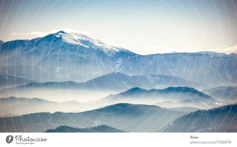Blick auf den Schneeberg wandern Ausflug Ferne Winter Landschaft Luft Wolkenloser Himmel Schönes Wetter Wald Alpen Berge u. Gebirge Schneealpe Muggendorf