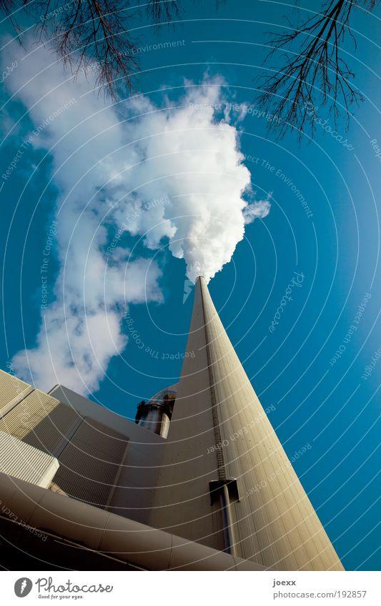 Rauchzeichen Himmel blau gelb Luft Umwelt Energie Industrie Energiewirtschaft Fabrik Turm Ast Schornstein Natur Umweltschutz Industrieanlage Umweltverschmutzung