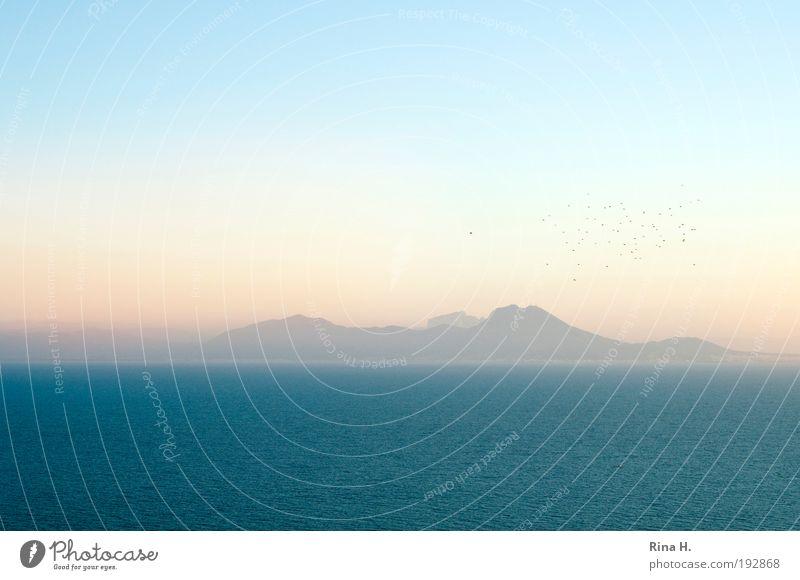 Sehnsucht Glück Ferien & Urlaub & Reisen Tourismus Ausflug Ferne Freiheit Natur Landschaft Wasser Wolkenloser Himmel Horizont Sonnenaufgang Sonnenuntergang