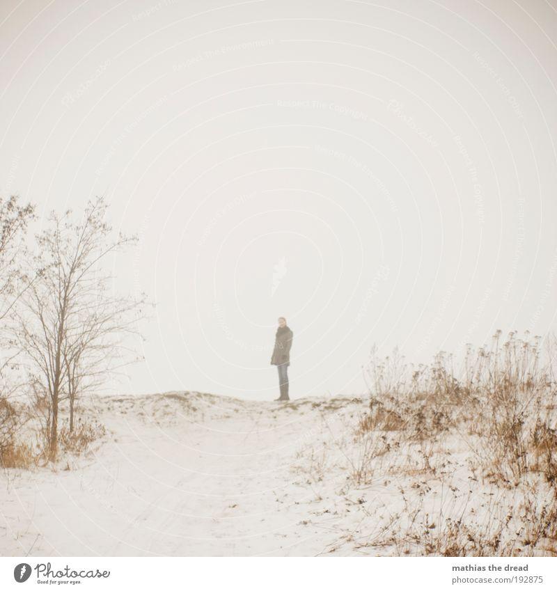 NEBELSCHWADENBILDER Mensch Junge Frau Jugendliche 1 18-30 Jahre Erwachsene Umwelt Natur Landschaft Himmel Horizont Winter schlechtes Wetter Nebel Eis Frost