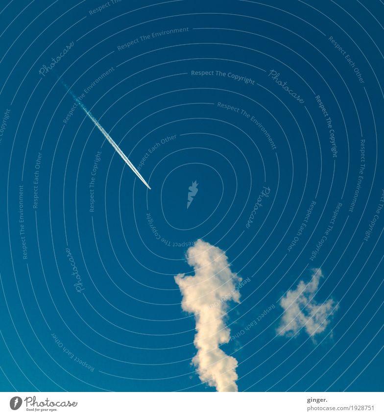 Sauerländer Himmel Luft nur Himmel Winter Schönes Wetter blau weiß Kondensstreifen Rauch hoch oben Strukturen & Formen Rauchen amorph Linie gegenüber Farbfoto