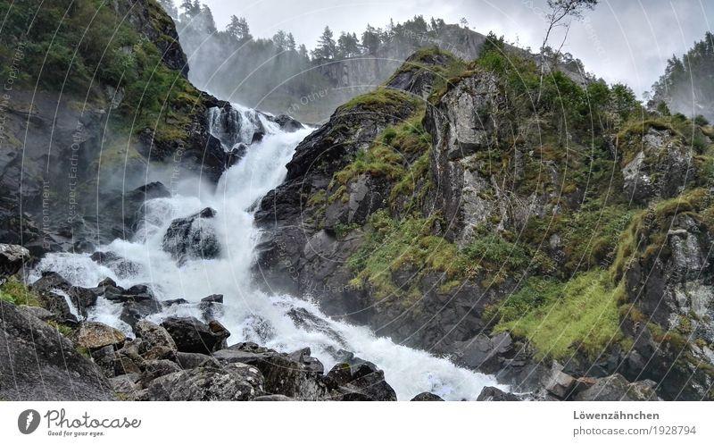 the powers that be Natur Ferien & Urlaub & Reisen grün Wasser weiß Baum Landschaft Gras grau Stein braun Stimmung Felsen wild frisch Kraft