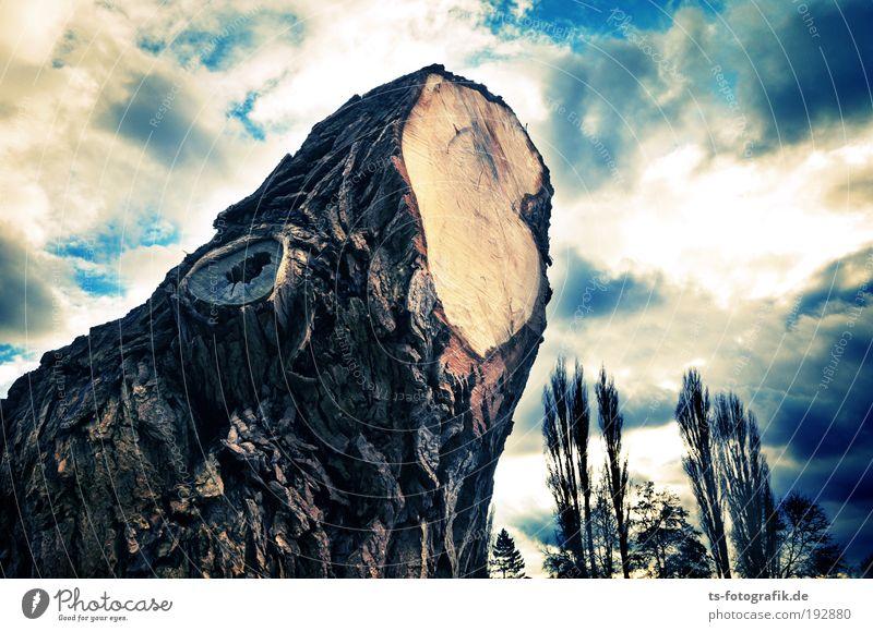 Tim Burton in Bremen Himmel Natur blau Baum Pflanze Wolken Landschaft dunkel Holz braun Regen Kraft Klima Vergänglichkeit Ast Zeichen
