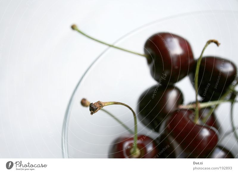Sommerpause im Piemont rot Ernährung Lebensmittel frisch süß Stengel lecker reif Schalen & Schüsseln Kirsche saftig Frucht knackig