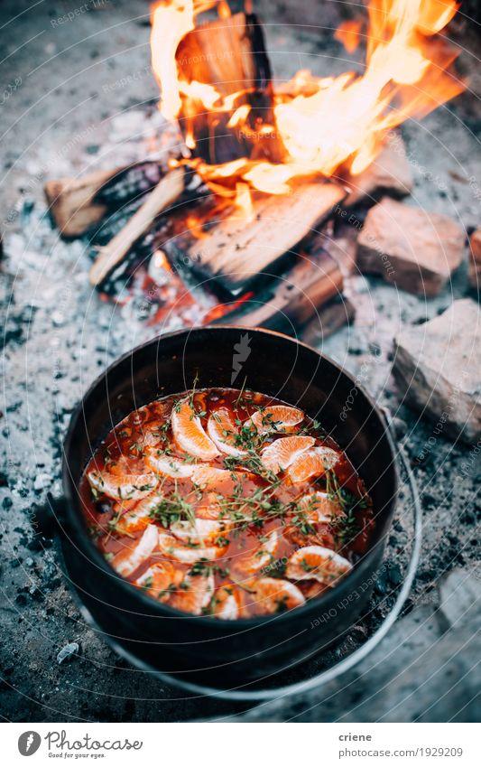 Köstlicher kochender Eintopfpotentiometer im offenen Feuer Natur Ferien & Urlaub & Reisen Essen Holz Lebensmittel Feste & Feiern Tourismus Ausflug Abenteuer