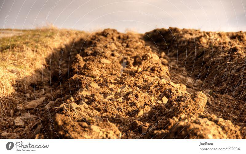 mutterboden überarbeitet Himmel Natur schön Umwelt Landschaft Horizont Erde Kraft Feld natürlich authentisch Wachstum Perspektive Boden Urelemente Landwirtschaft