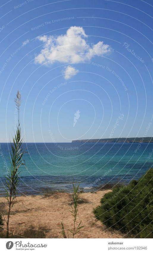 schöne Wolke Natur Landschaft Sand Himmel Sonnenlicht Sommer Schönes Wetter Pflanze Küste Strand Meer Mittelmeer Insel Formentera Balearen Spanien ästhetisch