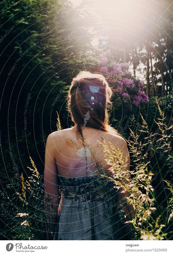 in die Natur Mensch Jugendliche Pflanze Junge Frau Blume Einsamkeit Umwelt Gefühle Liebe Lifestyle Gesundheit Haare & Frisuren Stimmung träumen Abenteuer