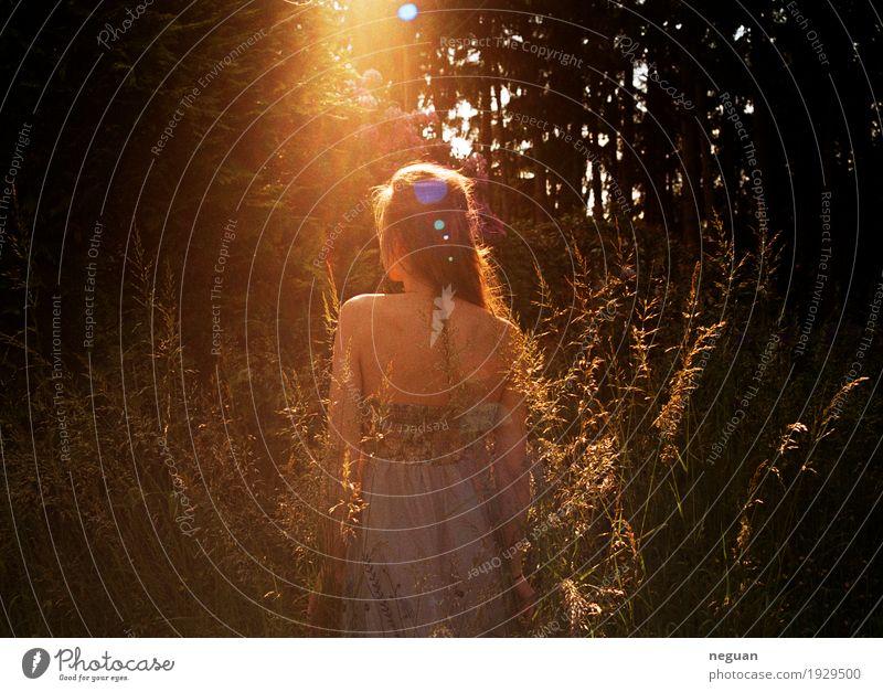 Natur Erleuchtung Mensch Jugendliche Pflanze Sommer Junge Frau Baum Blume Umwelt Gefühle Liebe Frühling Lifestyle Gras Gesundheit feminin