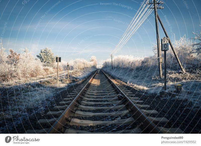 Straight forward... Ferien & Urlaub & Reisen Ausflug Ferne Winter Schnee Gleise Verkehr Verkehrsmittel Verkehrswege Bahnfahren Verkehrszeichen Verkehrsschild