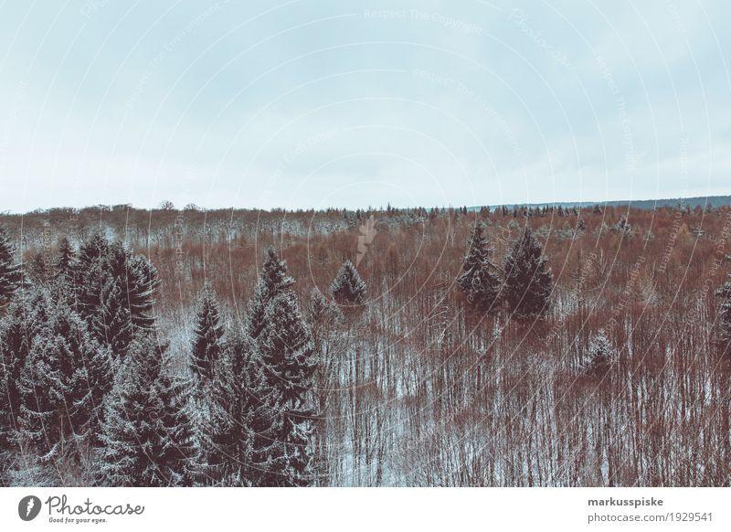 baumwipfelpfad ebrach Ferien & Urlaub & Reisen Pflanze Baum Landschaft Blatt Tier Ferne Winter Berge u. Gebirge Schnee Freiheit Tourismus Freizeit & Hobby