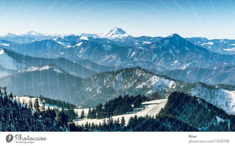 Blick vom Unterberg auf den Ötscher Skifahren Schneewandern Tourismus Ausflug Winterurlaub Berge u. Gebirge Natur Landschaft Luft Wolkenloser Himmel