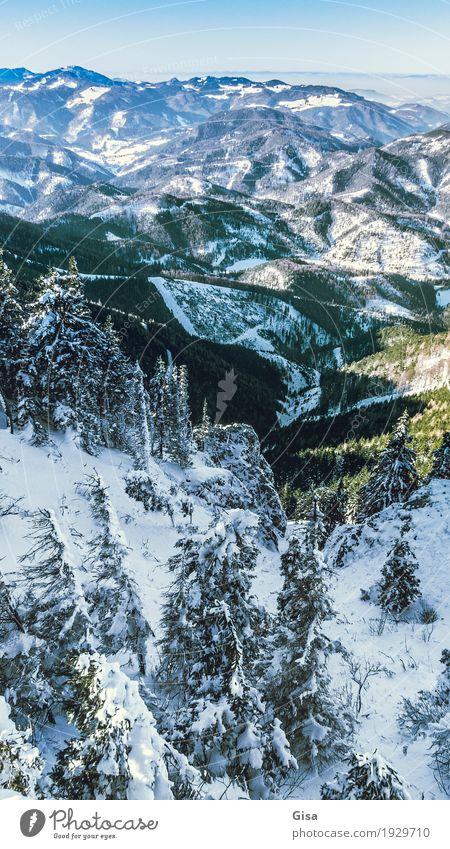 Blick vom Unterberg auf das Alpenvorland Schneewandern Skifahren Tourismus Winter Landschaft Tanne Berge u. Gebirge Gipfel Schneebedeckte Gipfel Unendlichkeit