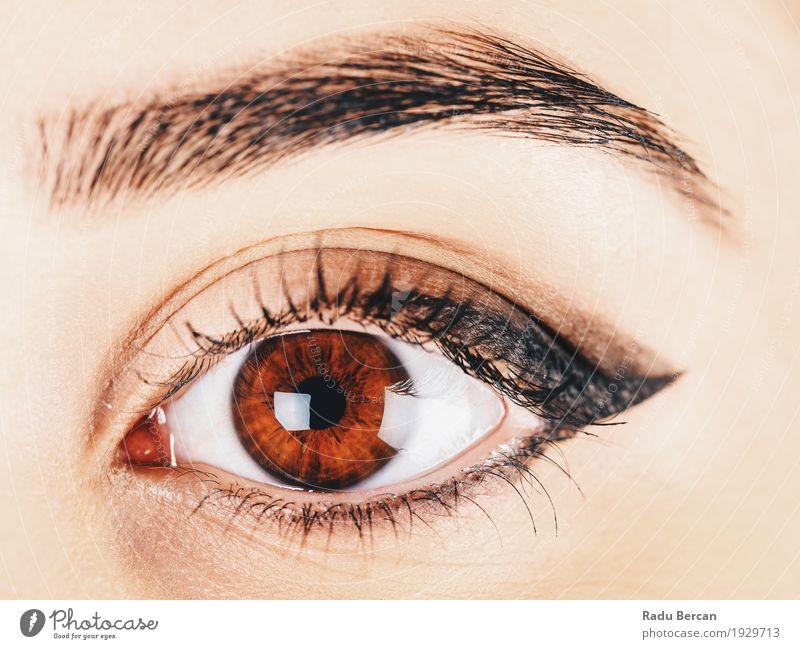 Frauenauge mit Make-up und langen Wimpern elegant Stil schön Haut Gesicht Kosmetik Schminke Wimperntusche Mensch feminin Junge Frau Jugendliche Erwachsene Auge