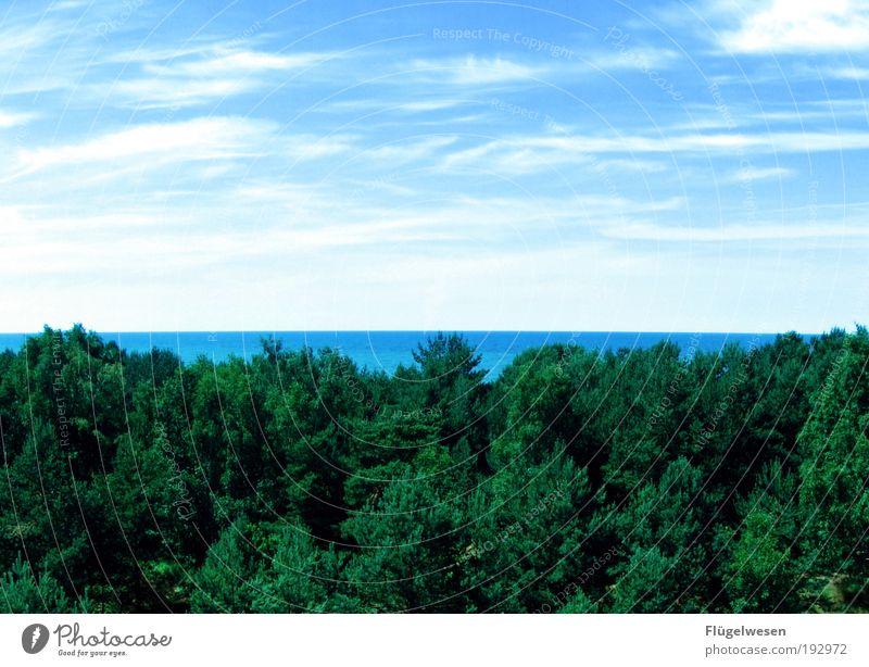Mehr Blick! Himmel Natur schön Sommer Strand Ferien & Urlaub & Reisen Meer Wolken Einsamkeit Ferne Wald Freiheit Landschaft Umwelt Zufriedenheit Freizeit & Hobby