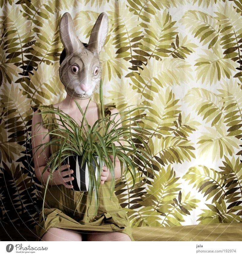i love grünzeug Frau Mensch grün Pflanze feminin lustig Erwachsene sitzen Ostern Maske Hase & Kaninchen Licht Karnevalskostüm Grünpflanze Porträt