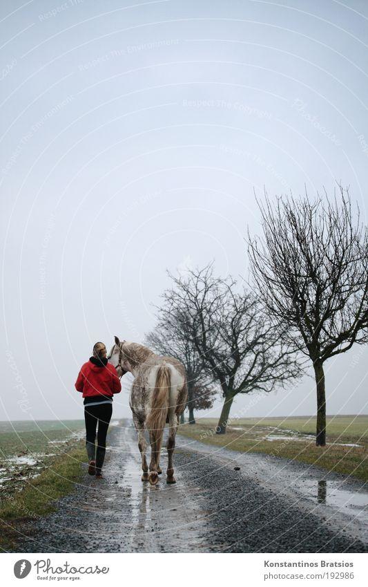 i°Q Mensch Frau Himmel Natur Jugendliche Baum Tier Erwachsene Landschaft feminin Leben sprechen Bewegung Junge Frau Freundschaft Horizont