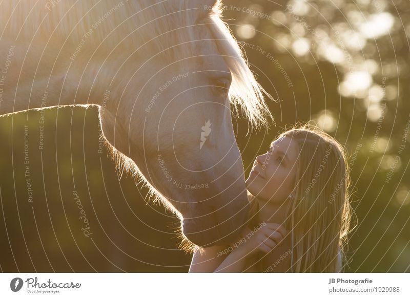 forever yours Freude Freizeit & Hobby Reiten Mensch feminin Junge Frau Jugendliche Erwachsene Kopf Haare & Frisuren Gesicht 1 18-30 Jahre Natur Sonnenaufgang