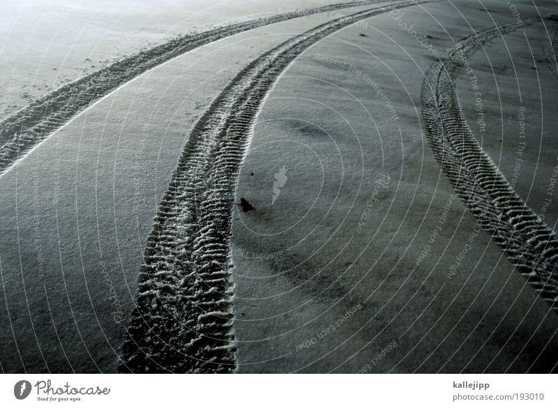 tod in der rechtskurve Winter Straße Schnee Bewegung Wege & Pfade Eis Straßenverkehr Verkehr Geschwindigkeit Frost Güterverkehr & Logistik bedrohlich Unfall